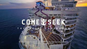 Royal Caribbean Cruise Lines TV Spot, 'Part of the Fun' - Thumbnail 7