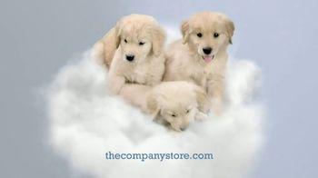 The Company Store LaCrosse LoftAire Pillow TV Spot, 'Perfect Balance' - Thumbnail 7