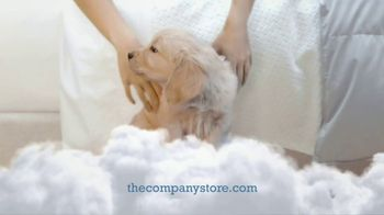 The Company Store LaCrosse LoftAire Pillow TV Spot, 'Perfect Balance' - Thumbnail 8