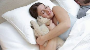 The Company Store LaCrosse LoftAire Pillow TV Spot, 'Perfect Balance' - Thumbnail 9