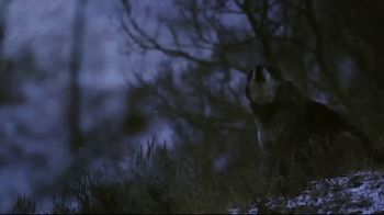 Leupold TV Spot, 'Be Relentless' - Thumbnail 2