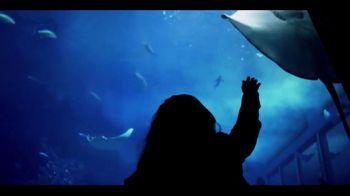 Japan National Tourism Organization TV Spot, 'Enjoy My Japan' - Thumbnail 3