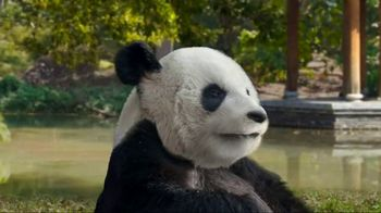Pei Wei Better Orange Chicken TV Spot, 'Move Over, Panda' - Thumbnail 4