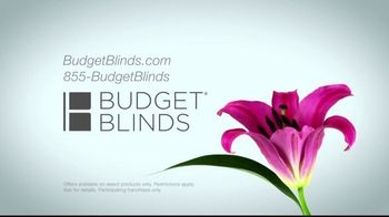 Budget Blinds TV Spot, 'Let the Sun Shine In' - Thumbnail 9