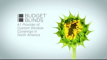 Budget Blinds TV Spot, 'Let the Sun Shine In' - Thumbnail 5
