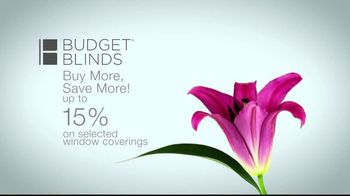 Budget Blinds TV Spot, 'Let the Sun Shine In' - Thumbnail 7