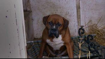 ASPCA TV Spot, 'Winter Help'