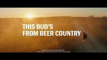 Budweiser TV Spot, 'El país de la cerveza' [Spanish] - Thumbnail 10