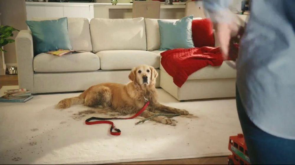 Resolve Pet Expert TV Commercial, 'Pet Mess Solved'