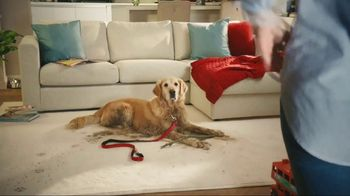 Resolve Pet Expert TV Spot, 'Pet Mess Solved'