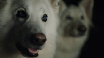 Land Rover Own the Adventure Sales Event TV Spot, 'Respect'