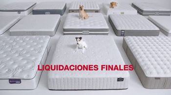 Macy's Venta del Día de los Presidentes TV Spot, 'Colchones' [Spanish] - Thumbnail 3