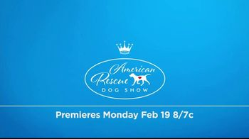 Hallmark Channel TV Spot, 'Adoption Ever After' Featuring Rich Eisen - Thumbnail 9