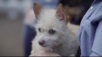 Hallmark Channel TV Spot, 'Adoption Ever After: Hero' Feat. Rebecca Romijn - Thumbnail 4