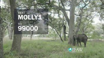 International Fund for Animal Welfare TV Spot, 'Stop the Killing' - Thumbnail 6