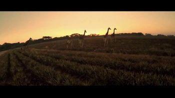 South Africa TV Spot, 'Plan Your Bucket List Trip' - Thumbnail 7