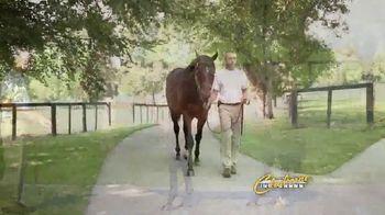 Claiborne Farm TV Spot, 'Orb: Outstanding Value'