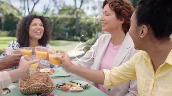 Chinet Cut Crystal TV Spot, 'Spring Pairs'