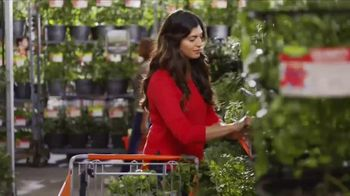 The Home Depot Spring Black Friday TV Spot, 'Trimmer, Soil and Herbs' - 521 commercial airings