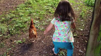 Nellie's Free Range Eggs TV Spot, 'Hens Are Friends' Song by Bob Dylan - Thumbnail 2