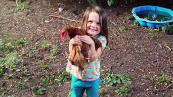 Nellie's Free Range Eggs TV Spot, 'Hens Are Friends' Song by Bob Dylan