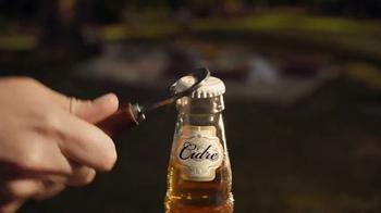 Stella Artois Cidre TV Spot, 'Three Apples' - Thumbnail 1