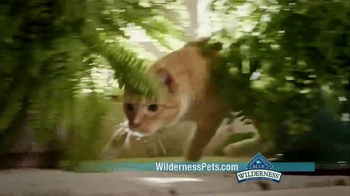 Blue Buffalo BLUE Wilderness Cat Food TV Spot, 'Lynx Hunger: Treats' - Thumbnail 6