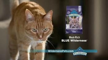 Blue Buffalo BLUE Wilderness Cat Food TV Spot, 'Lynx Hunger: Treats' - Thumbnail 7
