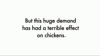 World Animal Protection TV Spot, 'Change for Chickens' - Thumbnail 4