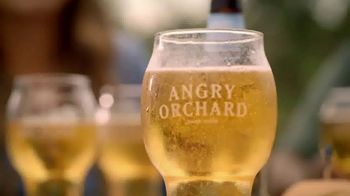 Angry Orchard TV Spot, 'Cider Lessons: Ep. 1: Apples to Apples' - Thumbnail 5