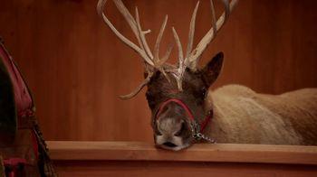 Overstock.com TV Spot, 'Holidays Bob Humbug' - 632 commercial airings