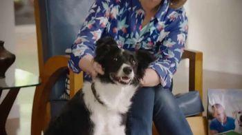 Blue Buffalo Life Protection Formula TV Spot, 'Blue Buffalo vs. Dog Chow' - Thumbnail 1