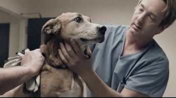 Pedigree TV Spot, \'Rescued\'