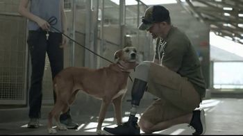 Pedigree TV Spot, 'Rescued' - Thumbnail 8