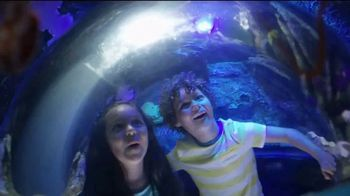 SeaWorld TV Spot, 'Your Visit Makes a Difference' - Thumbnail 5