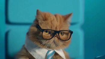 ZTE USA Axon M TV Spot, 'Business Cat'