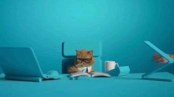 ZTE USA Axon M TV Spot, 'Business Cat' - Thumbnail 4