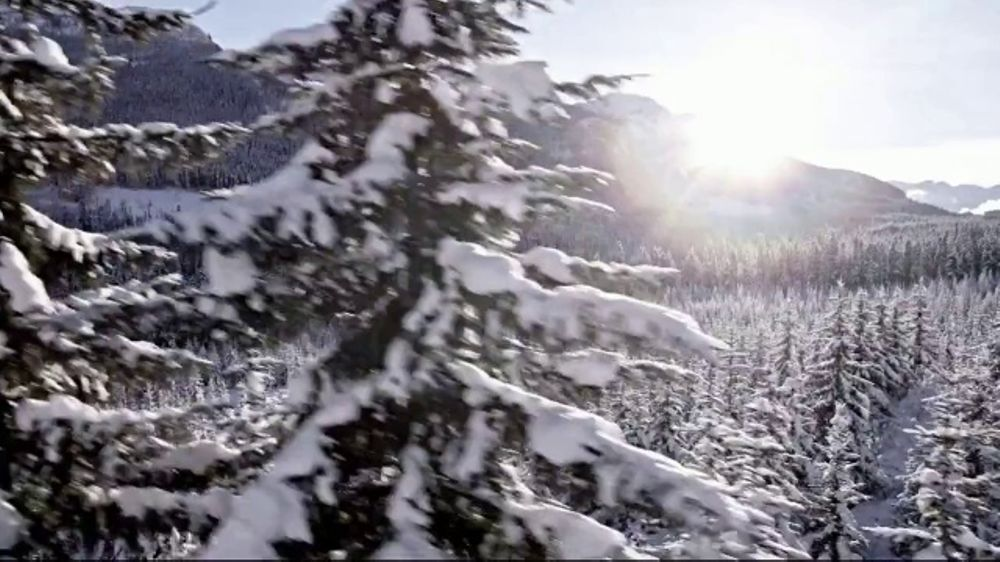 Lexus Special Presidents' Day Offer TV Commercial, 'Cabin Fever' Song by Farmdale [T2]