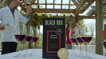 Black Box Wines TV Spot, 'Souvenir'