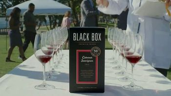 Black Box Wines TV Spot, 'Souvenir' - Thumbnail 4