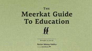 Bank of America TV Spot, 'VICELAND: Better Money Habits: Meerkat' - Thumbnail 1