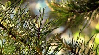 Alabama Tourism Department TV Spot, 'Sweet Home Alabama: Outdoors' - Thumbnail 5