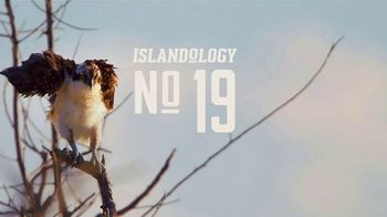 The Beaches of Fort Myers and Sanibel TV Spot, 'Islandology No. 19' - Thumbnail 3