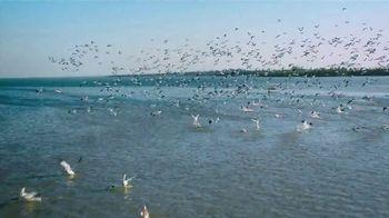 The Beaches of Fort Myers and Sanibel TV Spot, 'Islandology No. 19' - Thumbnail 7