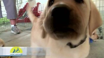 Canine Companions for Independence TV Spot, 'Puppy Raising PSA' - Thumbnail 1
