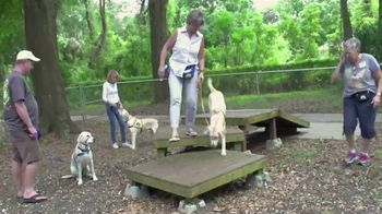 Canine Companions for Independence TV Spot, 'Puppy Raising PSA' - Thumbnail 8