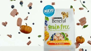 Purina Beneful Grain Free TV Spot, 'Súper alimentos' [Spanish] - Thumbnail 8