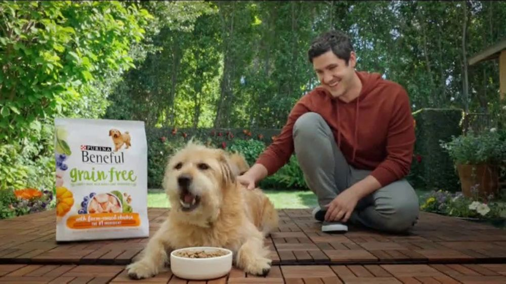 What Breed Dog Purina Tv Commercial White