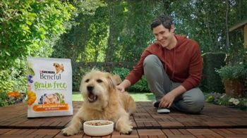 Purina Beneful Grain Free TV Spot, 'Superfoods' - 10544 commercial airings