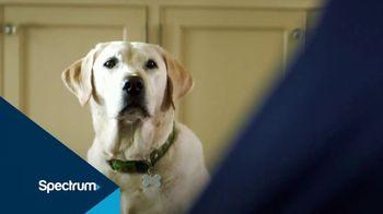 Spectrum TV TV Spot, 'More Free HD' - Thumbnail 2